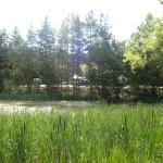 camping 11-7-11 085